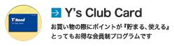 Y's Club Card ワイズクラブカード。